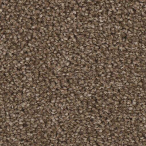 Sensation 06 Carpet - Phenix Grand Champion