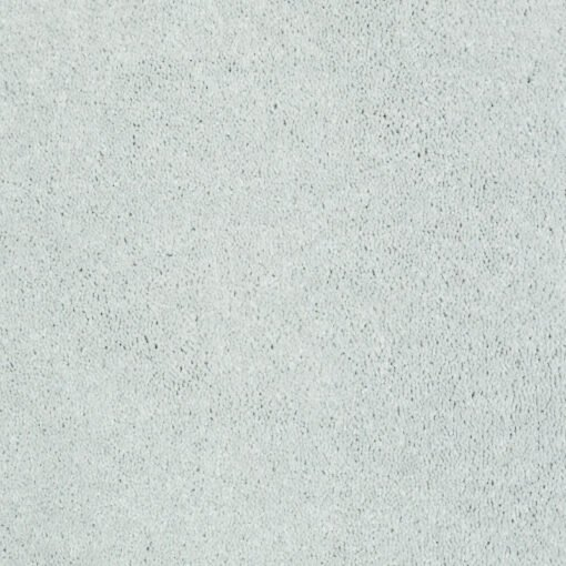 Sheer Silver 00500 Well Played Carpet