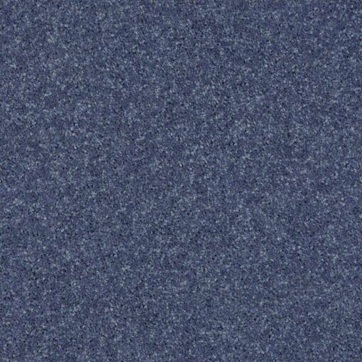 Steel 00544 Carpet - Shaw Metro Court 12'