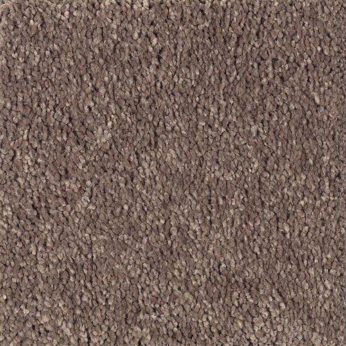 Stetson New Beginning - Mohawk Air.o Carpet
