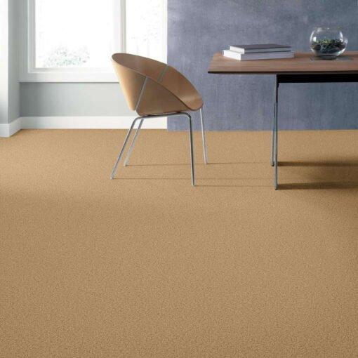 Sun Beam 00240 Carpet Full Room - Shaw Metro Court 12'