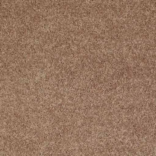 Taffy 00704 Carpet - Shaw Metro Court 12'