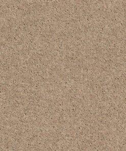 Tassel 00107 Carpet - Shaw Metro Court 12'