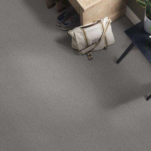 Taupe Stone 00502 Carpet Full Room