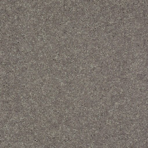 Thunder 00503 Well Played Carpet