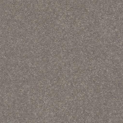 Tree Bark 00700 Carpet