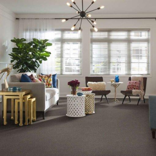 Tree Bark 00700 Carpet Full Room