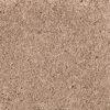Vintage New Beginning - Mohawk Air.o Carpet