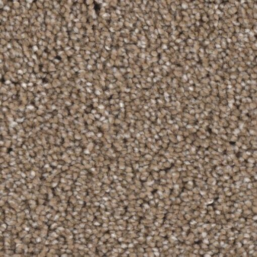 Warrior 05 Carpet - Phenix Grand Champion