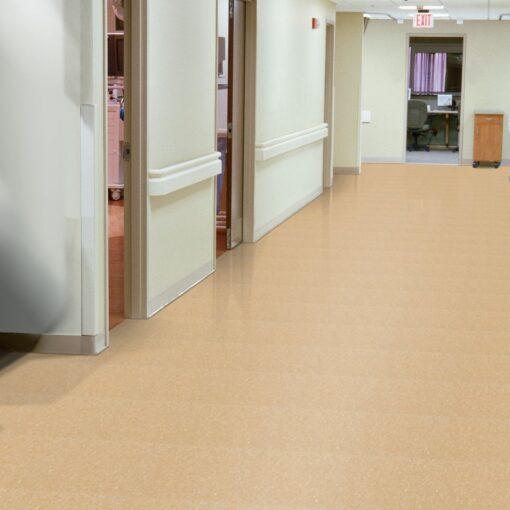Camel Beige 51805 Full Room - Standard Excelon - Armstrong Flooring