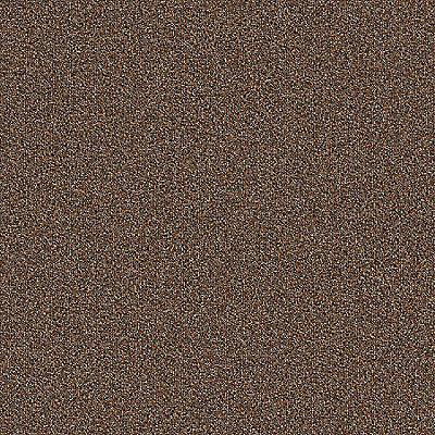 Chestnut 852 Carpet - Rule Breaker - Aladdin Commercial