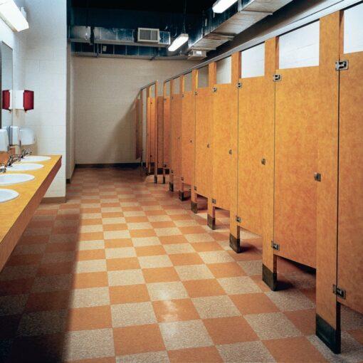 Desert Beige 51809 Full Room - Standard Excelon - Armstrong Flooring