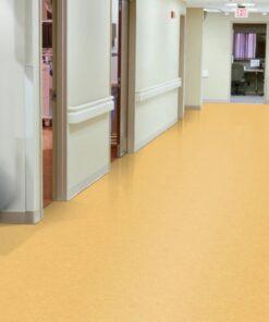 Golden 51878 Full Room - Standard Excelon - Armstrong Flooring