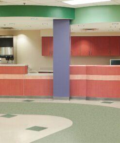 Granny Smith 51885 Full Room - Standard Excelon - Armstrong Flooring