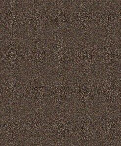 Hickory 869 Carpet - Rule Breaker - Aladdin Commercial