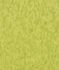 Kickin' Kiwi 57510 - Standard Excelon - Armstrong Flooring