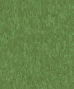 Lime Zest 57546 - Standard Excelon - Armstrong Flooring