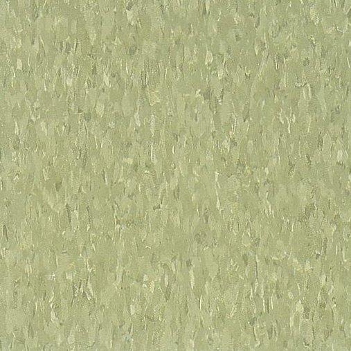 Little Green Apple 51866 - Standard Excelon - Armstrong Flooring