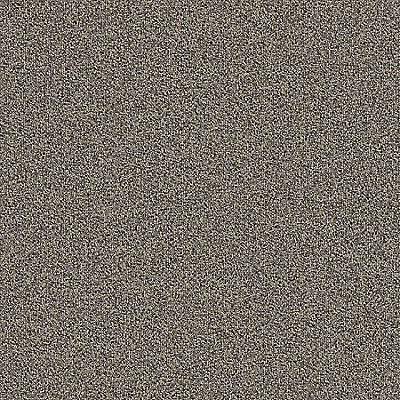 Nickel 959 Carpet - Rule Breaker - Aladdin Commercial