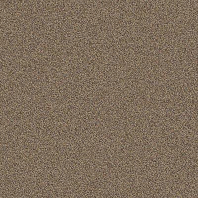 Praline 748 Carpet - Rule Breaker - Aladdin Commercial