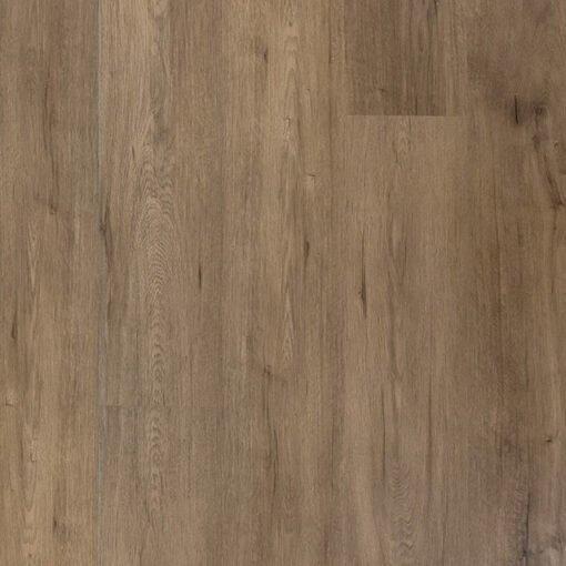 Remus (#304) - Sar Vinyl Floors - Titan Collection