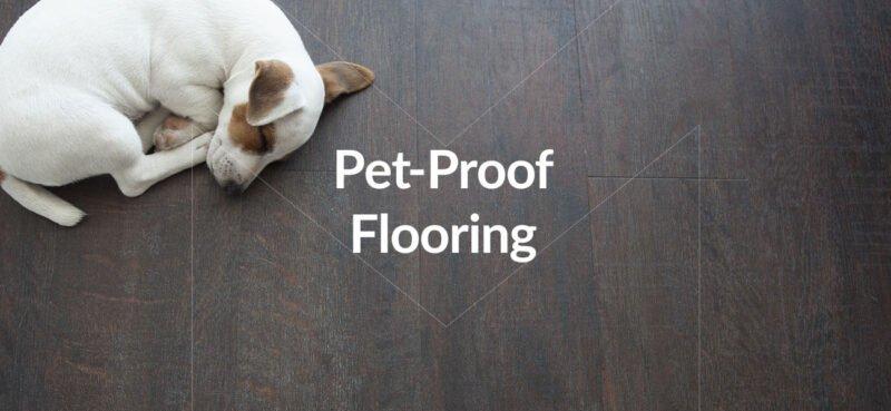 pet proof flooring