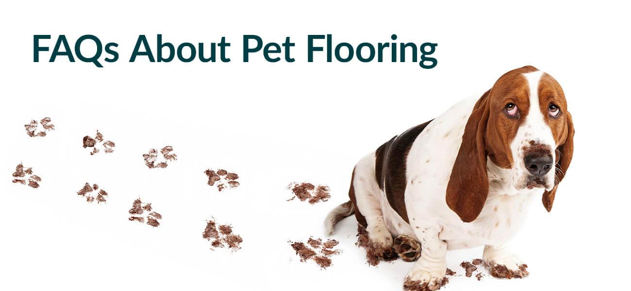 Pet flooring FAQs